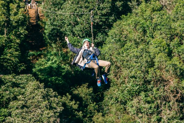 ziplining in the gold coast hinterland - destination management activity